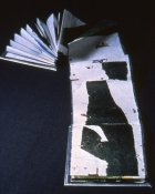 "Thumbnail image of ""Monoprint Book"""